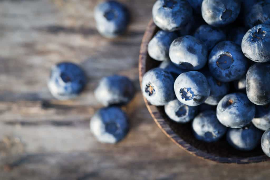 Rebecca Coomes the healthy gut blog spring into a new season with Fresh Blueberries