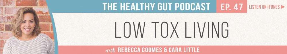 Rebecca Coomes The Healthy Gut Podcast with Cara Little on Low Tox Living