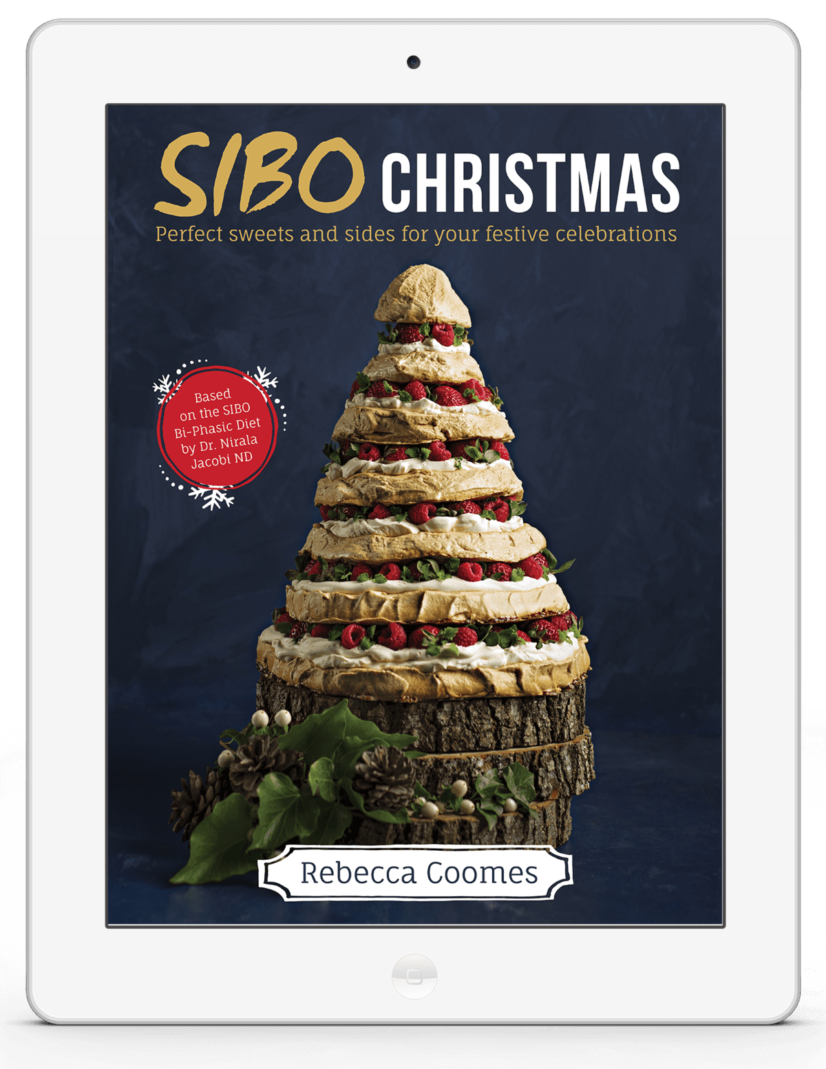 Rebecca Coomes The Healthy Gut SIBO Christmas Book 3d