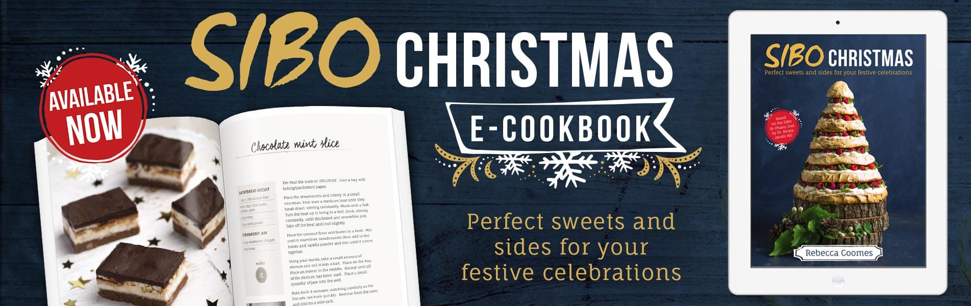 Christmas Book Available Website Banner