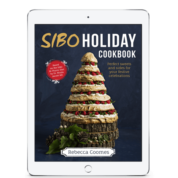 SIBO Holiday Cookbook Ipad Cover