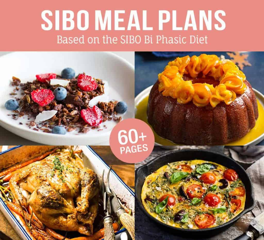 Sibo Foods Recipes