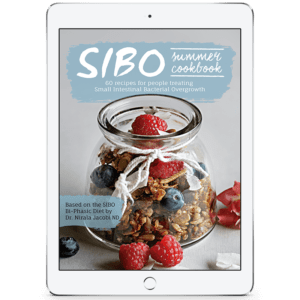 Sibo Summer Ipad Cover