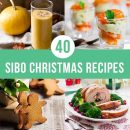 40 Christmas Recipes Blog